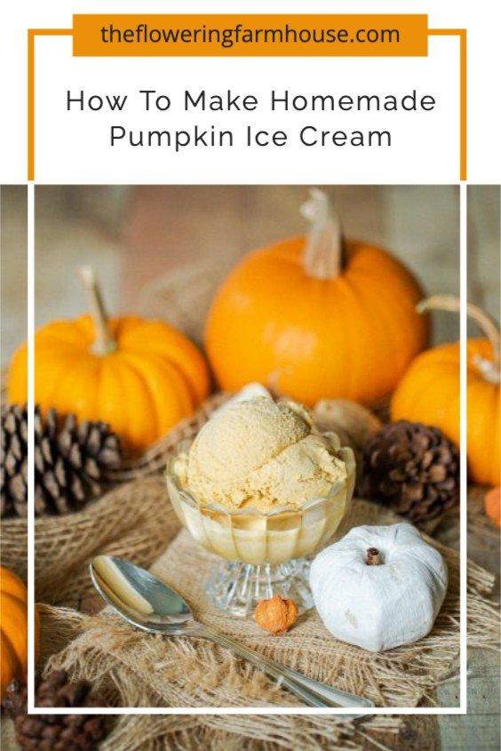 photo of homemade ice cream