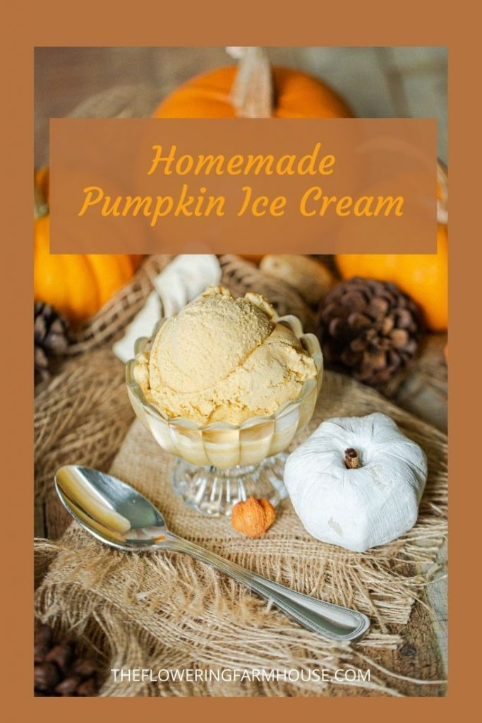 pumpkin ice cream made with only 5 ingredients